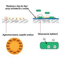 Środek do usuwania pleśni i grzyba Ag+ Mould Remover